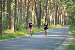 Two woman Jogging in park Stock Photography