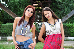 Two woman posing Royalty Free Stock Image