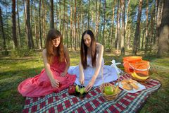 Two woman relax on picnic Royalty Free Stock Photo