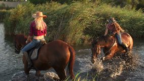 Two woman with their horses swimming in the lake. Two beautiful young woman with their horses swimming in the lake at sunset stock video footage