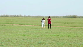Two woman walking in the meadow stock footage