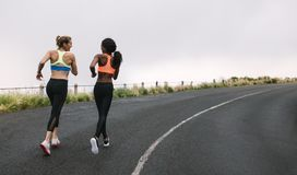 Two women athletes running on road. Rear view of two women athletes running on road early on a foggy morning. Fitness women jogging on road Royalty Free Stock Image