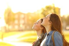 Two women breathing fresh air in a park at sunset stock image