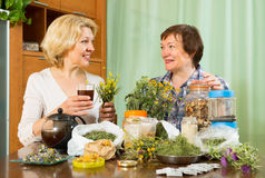 Two women brewing herbal tea Royalty Free Stock Photography