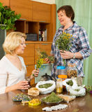 Two women brewing herbal tea Stock Photo
