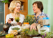 Two women brewing herbal tea Stock Photos