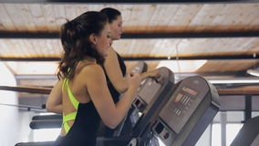 Two women brunette smiling and running on a treadmill simulator. The gym athletes perform exercises on the run. Involved calf muscles, thighs and buttocks stock video footage