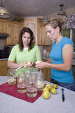Two women canning Royalty Free Stock Photo