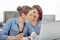 Two women college working on  laptop computer Royalty Free Stock Photo