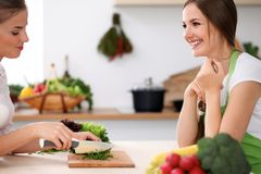 Two women is cooking in a kitchen. Friends having a pleasure talk while preparing and tasting salad. Friends Chef Cook Stock Photo
