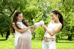 Two women divide a soft toy. Green summer  park background Royalty Free Stock Image