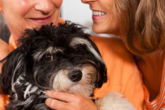 Two women with dog Royalty Free Stock Photo