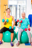 Two women doing strength sport in fitness gym Royalty Free Stock Photo