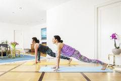 Two women doing yoga at home Royalty Free Stock Image