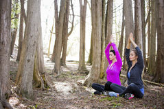 Two women doing yoga in the middle of the woods Royalty Free Stock Photography
