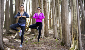 Two women doing yoga in the middle of the woods Royalty Free Stock Image