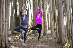 Two women doing yoga in the middle of the woods Stock Images