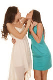 Two women dresses kissy face Royalty Free Stock Photo