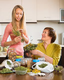 Two women with dried herbs Stock Photos