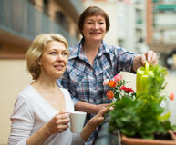 Two women drink tea on balcony Royalty Free Stock Photos