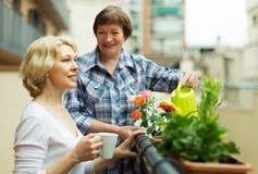 Two women drink tea on balcony Stock Photo