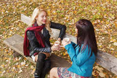 Two women drinking coffee in the park Royalty Free Stock Images