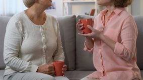 Two women drinking tea and sharing female experience, recommendations for life. Stock footage stock video