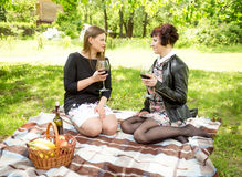 Two women drinking wine and talking at picnic Stock Photos