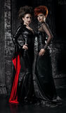 Two women in fetish costumes. Two women in gothic fetish costumes stock images