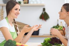 Two women friends cooking in kitchen while having a pleasure talk. Friendship and Chef Cook concept.  Stock Photography