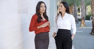 Two women friends standing chatting. Outdoors in an urban environment smiling as they share their news  upper body against an off white wall stock video footage