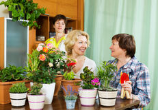 Two  women  and girl near table with  flowerpots Stock Photos