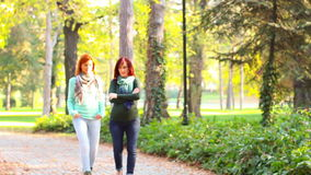 Two women, having a walk in the park. On autumn day stock footage