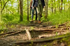 Two women hiking along a forest footpath Stock Photo
