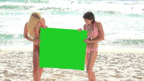 Two women holding a green screen. In their swimwear stock footage