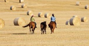 Two Women Horseback Riding in a Field Stock Photo