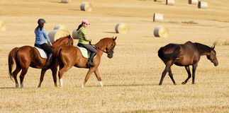 Two Women Horseback Riding in a Field Stock Image