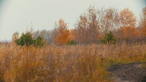 Two women on the horses backs running on the autumn field
