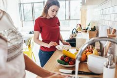 Two women in the kitchen cooking and washing dishes. Two women in the kitchen cooking and washing dishes Stock Image