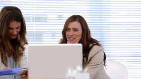 Two women laugh by working. With computer stock footage