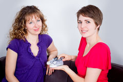 Two women in living room Royalty Free Stock Image