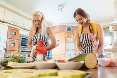 Two women making salads in the kitchen stock photos