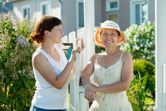 Two  women near fence wicket Stock Photography