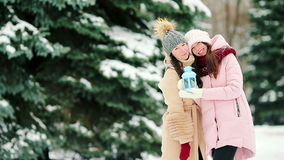 Two women outdoors on beautiful winter snow day stock footage