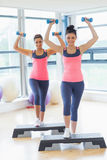 Two women performing step aerobics exercise with dumbbells Royalty Free Stock Image