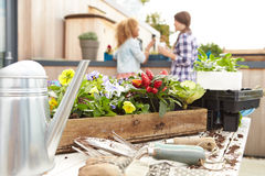 Two Women Planting Rooftop Garden Together Stock Photo