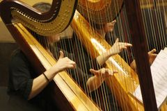 Two women play the harp during a symphonic concert. stock image