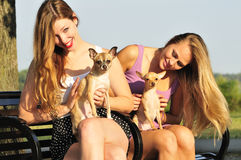 Two women playing with cute puppies royalty free stock photos