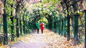 Two women in a red and green autumn coat walk along the archway of a mall.  stock video footage
