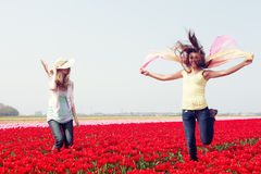 Two women in a red tulip field Royalty Free Stock Photo